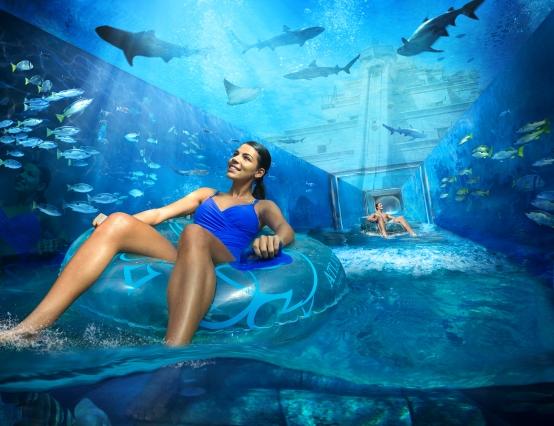 marine_and_waterpark_aquaventure_waterpark_02_08_2015_102ext