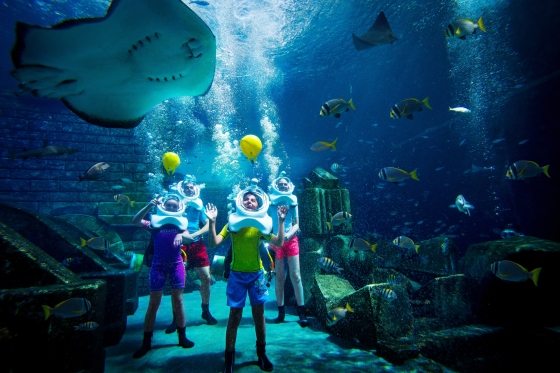 marine_and_waterpark_marine_animal_adventures_24_09_2014_9476ext